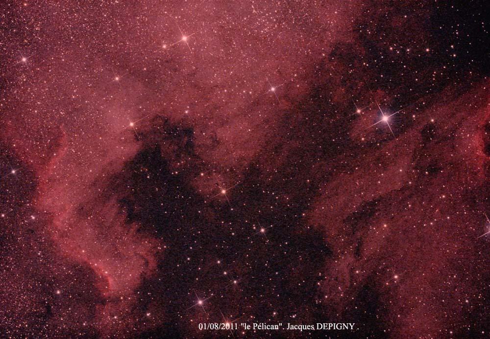 "NGC 7000 ""Jacques Depigny"""